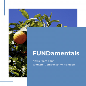 FCBI Fundamentals Blog